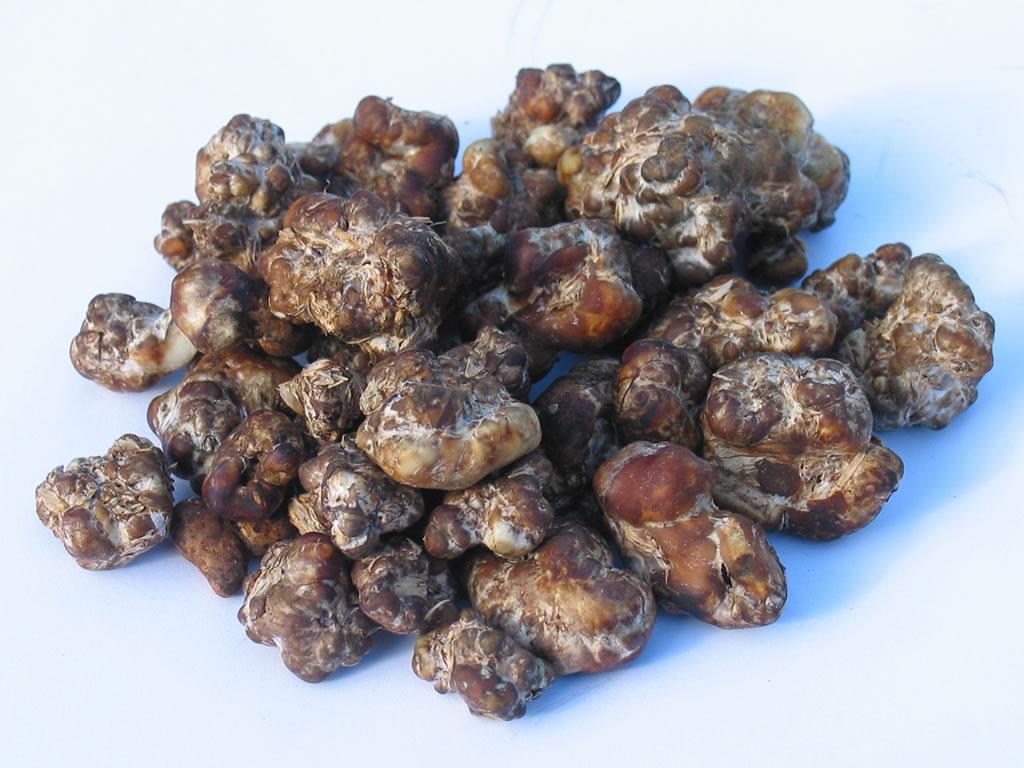 Sienet Huume